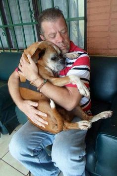 Man's amazing reunion with the sweet Boxer dog he rescued off the streets (PHOTOS) » DogHeirs | Where Dogs Are Family « Keywords: Boxer, lost dog, Costa Rica, viral photo