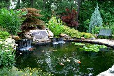 Higher's Koi Pond by Artistic Landscapes