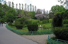 #GradinaBotanica #GradinaBotanicaBucuresti #CartierulCotroceni #Cotroceni  #ghid #urban #circuiteturistice www.cotroceni.ro Sidewalk, Plant, Side Walkway, Walkway, Walkways, Pavement