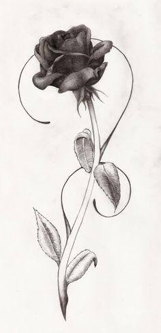 black roses tattoo design - Google Search