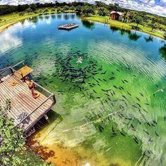Brazil Wonders - Bonito - Mato Grosso do Sul (via Embratur - Instituto Brasileiro de Turismo)