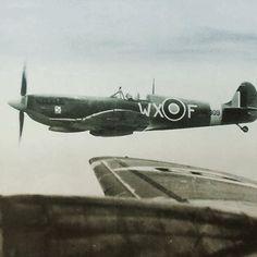 RAF Spitfire ( polish squadron ) escorting a USAAF B-17 Flying Fortress
