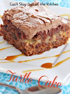 Turtle Cake - IMG_4323.jpg