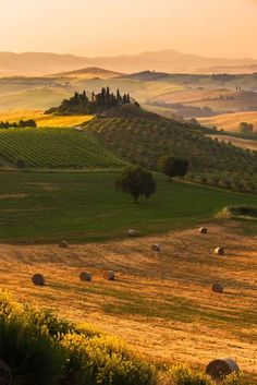 Photo: Val d'Orcia, Tuscany, Italy  The Tuscan countryside is the epitome of rustic romance — and offers endless green and gold vistas for as far as the eye can see. And if the views aren't enough to entice you (but seriously, they're straight out of a Renaissance painting) the wine and cheese in towns like Montalcino, Pienza, and Montepulciano will.