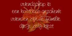 Vriendschap is een kostbaar geschenk, vrienden zijn de familie die je zelf kiest ☼