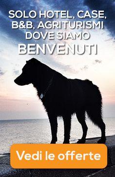 Hotel che accettano cani di tutte le taglie, ma anche case vacanze, agriturismi e B&B al sud Italia...