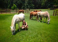 Psychotherapist Borrows Horse Sense for Book on Human Behavior | Straight from the Horse's Heart