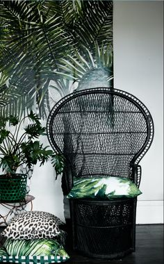 black rattan chair wish I still had mine but I left it in NM I think I GAVE it away!