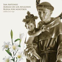 Trinidad, Padua Italy, Angeles, Religious Images, Mystique, Papa Francisco, Sacred Heart, All Saints, Jesus Christ