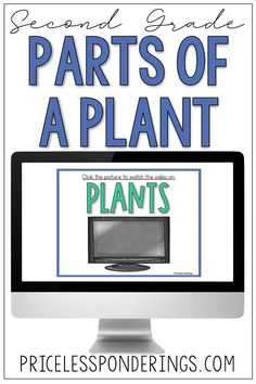 Looking for low-prep, student-friendly parts of a plant activity ideas? This life science activity pack will help you plan your science class with ease. Science Curriculum, Science Resources, Interactive Activities, Hands On Activities, Science Activities, Life Science, Classroom Activities, Vocabulary Sentences, Vocabulary Cards
