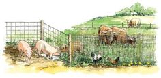 Farm Fencing: Horse High, Chicken Tight and Bull Strong-Good fences make good neighbors