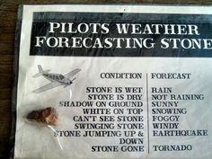 Forecasted