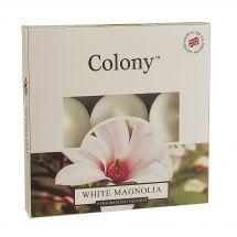 White Magnolia Tealights