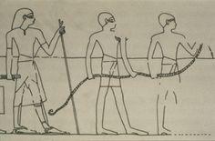 A História da Corda