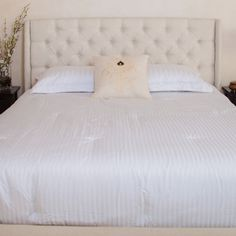Best Selling Home Wicklow Upholstered Headboard  $177