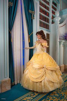 shutterbugsteph: Beast & Belle in New Fantasyland Disney's Photopass Bonus Content