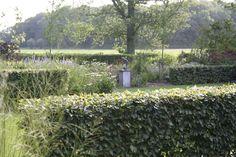 Tuinontwerp Hollandse tuin | TuinTuin Garden Inspiration, Holland, Plants, Lawn And Garden, The Nederlands, The Netherlands, Netherlands, Plant, Planets