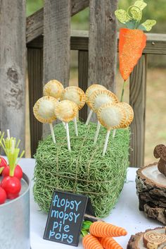 Peter Rabbit Party Pie Pops