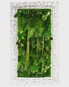 'Half the pain in human life comes from gazing in mirrors. Moss Wall Art, Moss Art, Plant Art, Plant Decor, Moss Garden, Garden Art, Indoor Garden, Indoor Plants, Decoration Plante