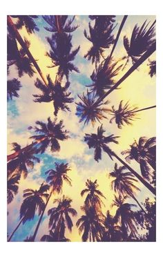Beach/ sun/ summer