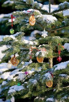 Jeux Noél / Merry Christmas/ Zalig Kerstfeest  Roger & Maud Maatje-Fortin