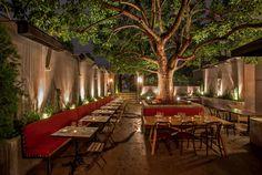 Terrine. Mid-Wilshire. 12 best new LA date spots