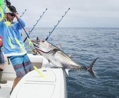 Side-tracking spreader-bar systems are becoming the hottest new tool in the offshore fishing arsenal.