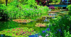 観光客激増!睡蓮が美しい「モネの池」は全国各地に存在した! - Find Travel