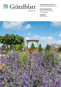 Nussdorf Heiligenstadt - STADTBEKANNT Vineyard, Plants, Outdoor, Things To Do, City, Outdoors, Vine Yard, Vineyard Vines, Plant