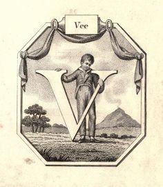 """""""Vee"""" (V) ~ Vintage Children's ABC Flash Card"""