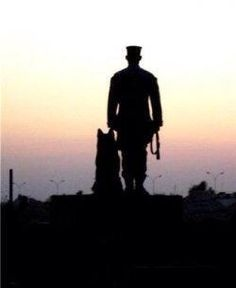 Saluting our veterans - all two-legged and four-legged ones...