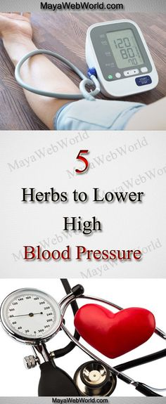 5 Herbs to Lower High Blood Pressure