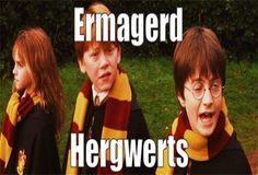 10 times the Harry Potter fandom was too funny.