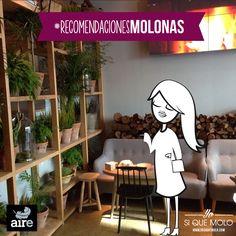 Salí del Museo de Cera con tal hambre que me hacía rug rug la barriguita, así que pregunté hasta que dí con #AireRestaurante. Solo aves, #cocina clásica con un punto #asiático ¡para chuparse los dedos!  #Madrid #recomendacionesmolonas #guiamolona #pijamolona