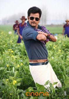 Sivakarthikeyan Actor Gallery - Cinemagrind.com