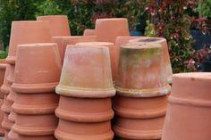 HAVEDAGBOGEN: Burford garden company