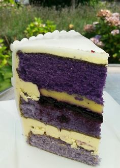 Vanille buter creme and purple layers with blue berries