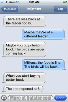 Texts from Mittens: The Evil Chipmunk Edition | Catster