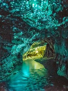 Waitomo Glowworm Caves, New Zealand.  Magical.