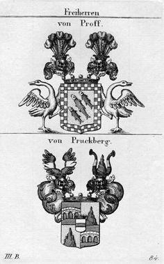 Wappen der Freiherren von Proff und von Pruckberg / Coats of Arms of The Baronial Families von Proff and Pruckberg / Armas de los Barones von Proff y von Pruckberg