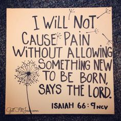 Your pain is for a reason, nothing is wasted ♥