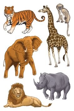 Ryan Hall Can Draw: Safari Animals - 3D Stickers