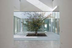 mediterranean influences captured in home by otto medem arquitectura