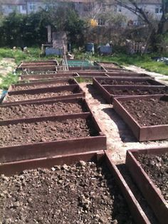 Raised beds at allotment i cultivated between 2007 & 2009 #allotment
