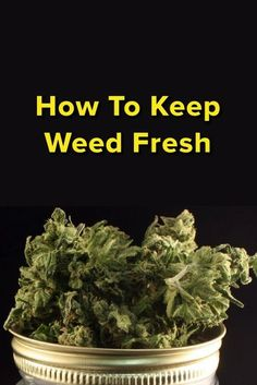 Buy marijuana seeds from Crop King Seeds. A Cannabis Seed Bank with the largest selection of feminized, autoflowering and regular cannabis seeds since Cannabis Edibles, Cannabis Oil, Herbs For Depression, Marijuana Facts, Cannabis Growing, Buy Weed Online, Medical Cannabis, Medicinal Herbs, Smoking Weed