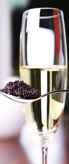 caviar and champagne, osetra, beluga, sevruga caviar, wine Alcoholic Drinks, Cocktails, Beverages, Cocktail Recipes, Luxury Food, Festa Party, Nye Party, Wine Cheese, Fine Dining