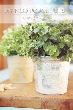 Mod Podge Craft: DIY Scrapbook Paper Pots