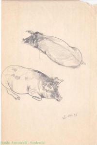 1935_5(1) Animals, France, Animales, Animaux, Animal, Animais, Dieren