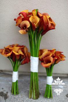 Bouquet de jarros, simples.