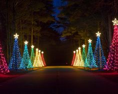 The incredible Callaway Fantasy Christmas Lights.